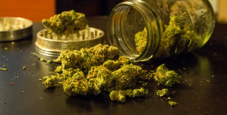 Marijuana for medical uses is not able to make you high – discover the doctors' prescriptions