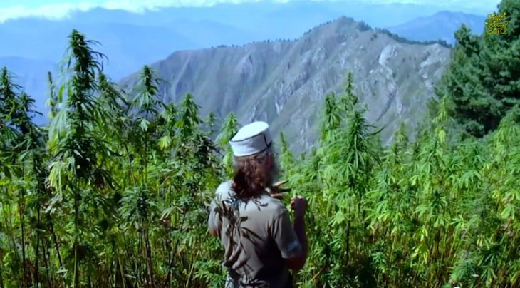 What If suddenly all Types of People like Cannabis?