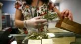 reality about the Marijuana