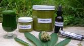 Cannabis or Marijuana Oil Preparation in a Convenient Way