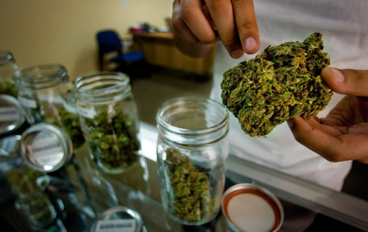 Pro-Marijuana States Take Proactive Measures to Safeguard Cannabis Users and States from Trump