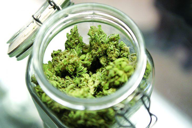 Are Marijuana Buds Edible