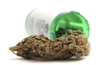 Illness that can be treated by Marijuana