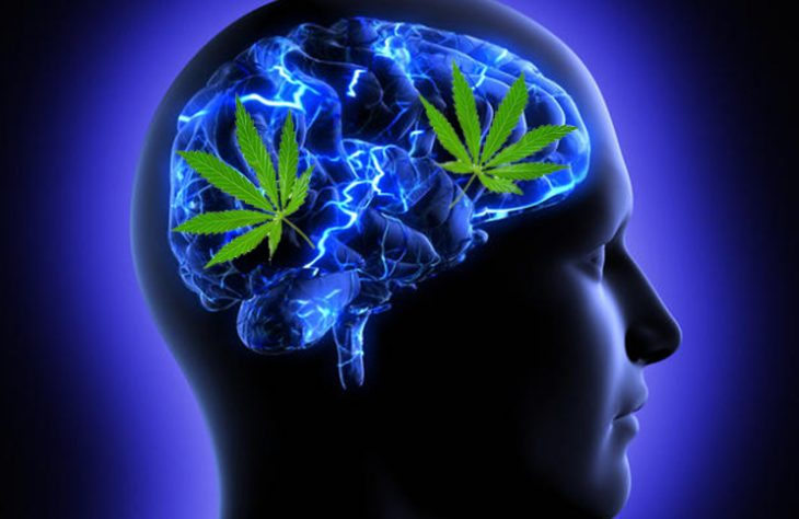 Improve Your Mental Health with Marijuana