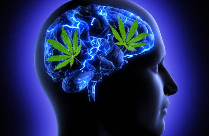Improve Your Mental Health with Marijuana