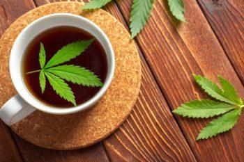 Cannabis-tea