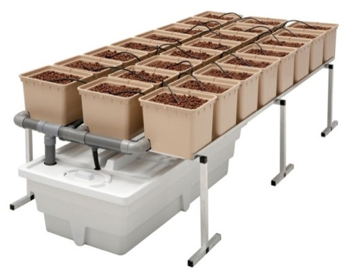 cultivo hidroponico sistemas 1