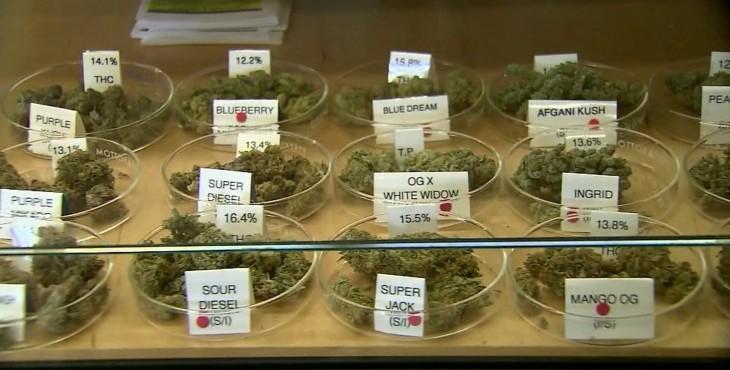 illinois medical weed
