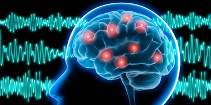 epilepsia weed