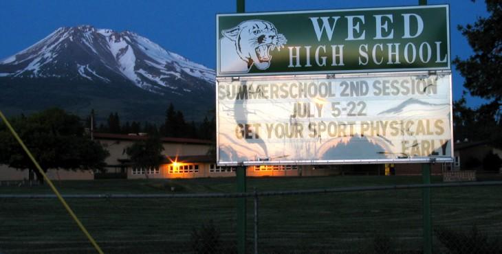 weed school