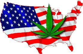 usa marihuana