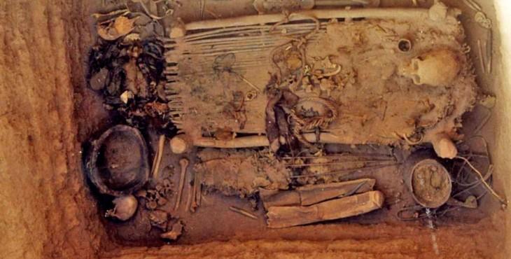 ancient cannabis
