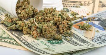 Trump Gives Cannabis Stocks a Reason to Celebrate