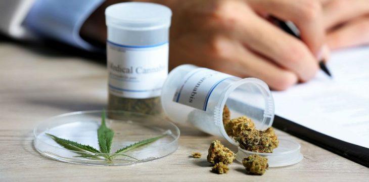 Use of Medical Marijuana in Minnesota Increases