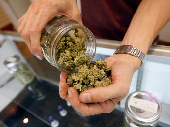 Facts That Can Prove Marijuana Is Good for Your Health