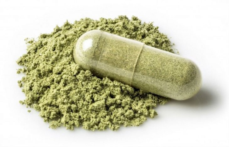 Insight about Herbal Medicines