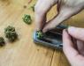 How Is Marijuana Used