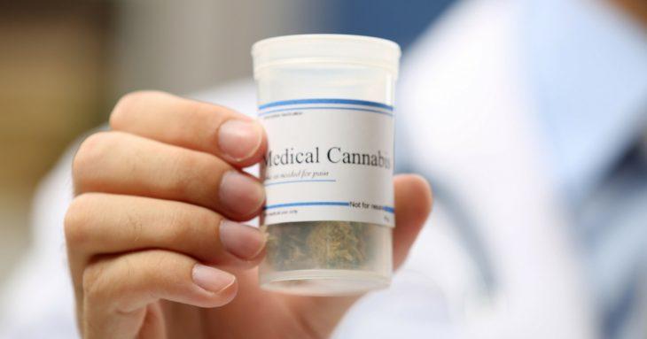 Marijuana: Source of Energy For The Elderly