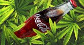 Coca-Cola may enter the world of Marijuana