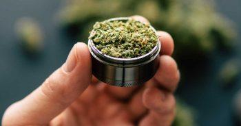 List of Reasons for Legalization of Marijuana