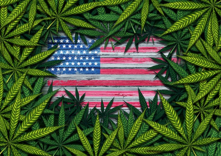 Major Reasons Pertaining to Non-Legalization of Marijuana in the US