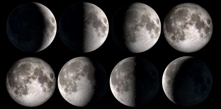 Did You Know that You Can Cultivate Marijuana with the Lunar Phases? Here's What You Should Know.