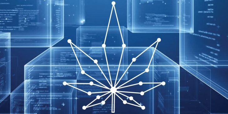 Relationship between Cannabis and Tech