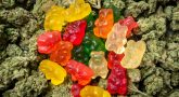A Guide On How To Make Marijuana Candies At Home