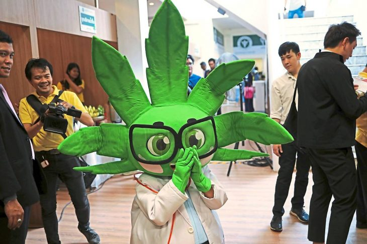 Bangkok hospital comes up with country's first medical cannabis clinic