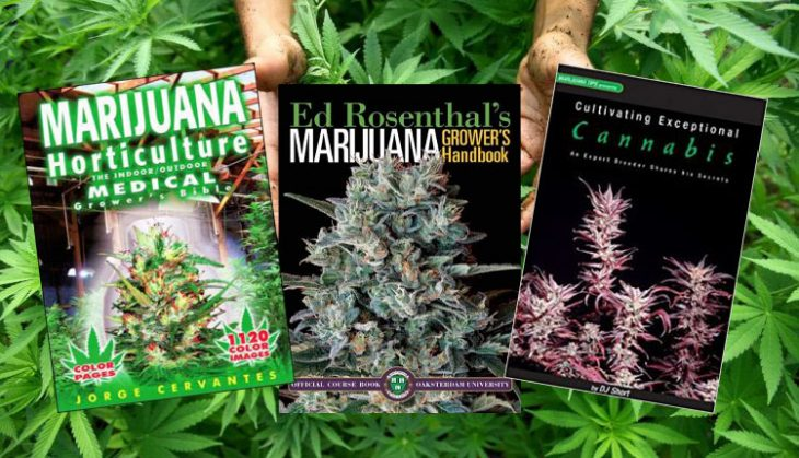 Top 10 Books On Cannabis