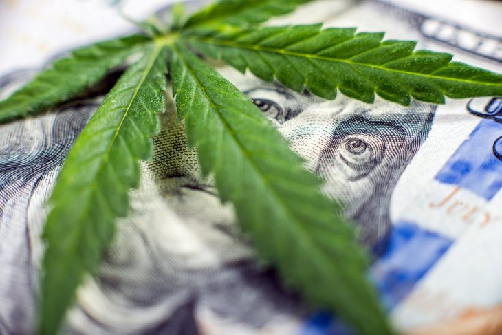 Cannabis Industry's Growth Projections for the Year 2021