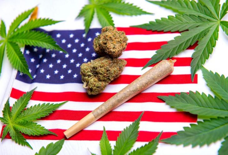 Marijuana Legalization in America and Public View Regarding the Same : Is it Good or Bad?